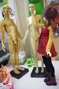20141214_anatomy_03