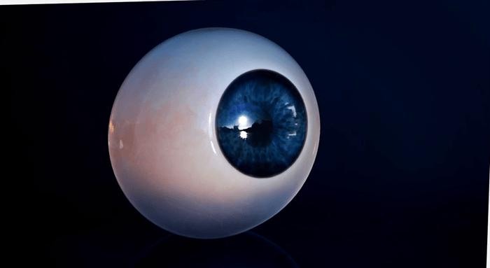 20141226_maya_eye_04