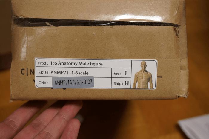 20150131_anatomytools.com_10