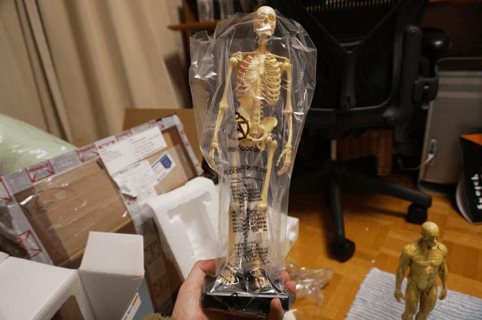 20150131_anatomytools.com_17
