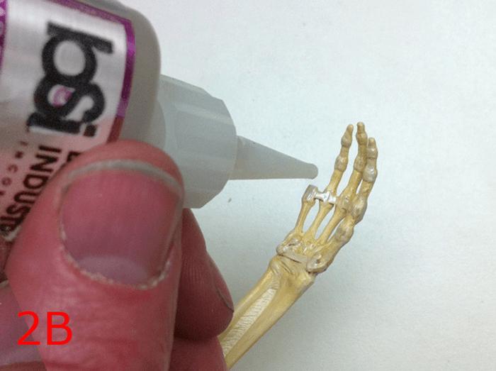 150301_anatomytools_09